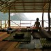 New Yoga Sala and ShinKwan by Jungleyoga.com Thailand