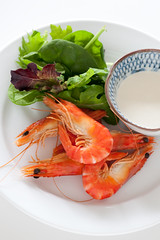 shrimp, animal, caridean shrimp, fish, seafood, invertebrate, produce, food, scampi, dish, cuisine,