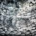 broken glass I - free 2 use TEX by H.Adam