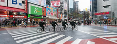 road, urban area, city, downtown, street, pedestrian, infrastructure, pedestrian crossing, zebra crossing,