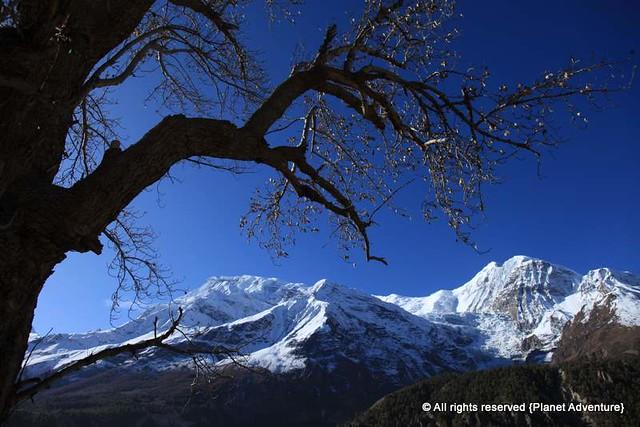 Annapurna Circuit Trek - Nepal
