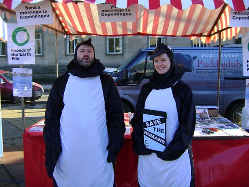 Penguins in Kirkcaldy