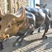 Lucky Wall Street Bull