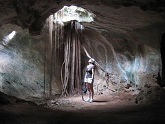 ice cave(0.0), formation(0.0), stalagmite(0.0), pit cave(1.0), cave(1.0), caving(1.0),