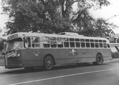 trolleybus, vehicle, transport, mode of transport, public transport, land vehicle, black-and-white, bus,