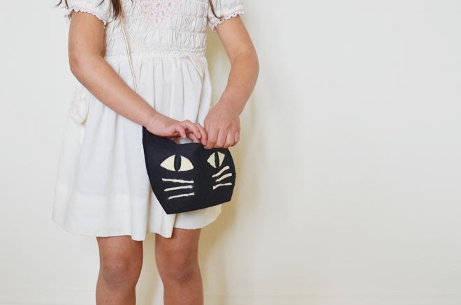 a cat bag