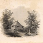Manilla cottage. Drawn by A.T. Agate. Engraved by J. Smillie. (Philadelphia, Lea & Blanchard. 1845)