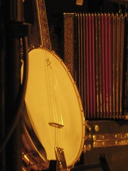 plucked string instruments, string instrument, tanbur, folk instrument, banjo uke, string instrument,