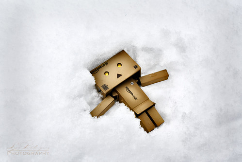 Danbo Snow Angel