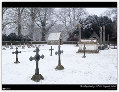 Winter in the College Cemetery