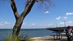 Ballast Point Park