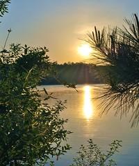 Good morning Lake Allatoona