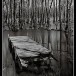 Broken+Dock