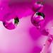 Liquid spheres by MrLeica.com (MatthewOsbornePhotography)