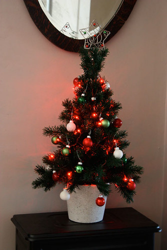 The Little Christmas Tree That Could Life At Cloverhill