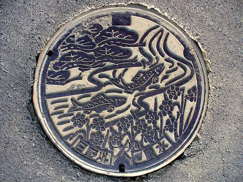 Fukui pref manhole cover(福井県日野川流域のマンホール)