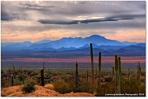 arizona cactus sky mountains landscape desert tucson unitedstatesofamerica scenic geology contours 2500views 200comments 50favorites nikond90