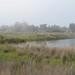 Shoreline-2010-02-13