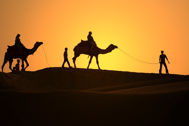 passaggio nel deserto del thar