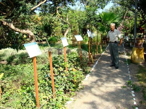 Flickriver photoset 39 peru parque jard n bot nico for Jardin botanico medicinal