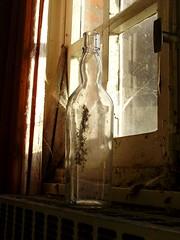 doel - old bottle in sunlight