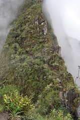 Subiendo a Wayna Picchu