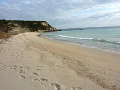 Sur le sentier de Sperone : la plage de Grand Sperone