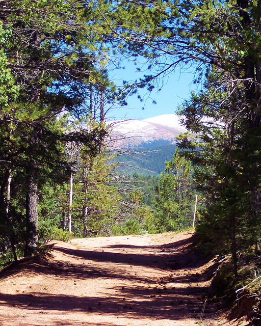 Old Road in Mueller State Park, Pikes Peak in Background with early snow, Colorado, August 28, 2004