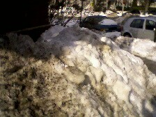 Filthy Baltimore Snow Feb 20 2009 e