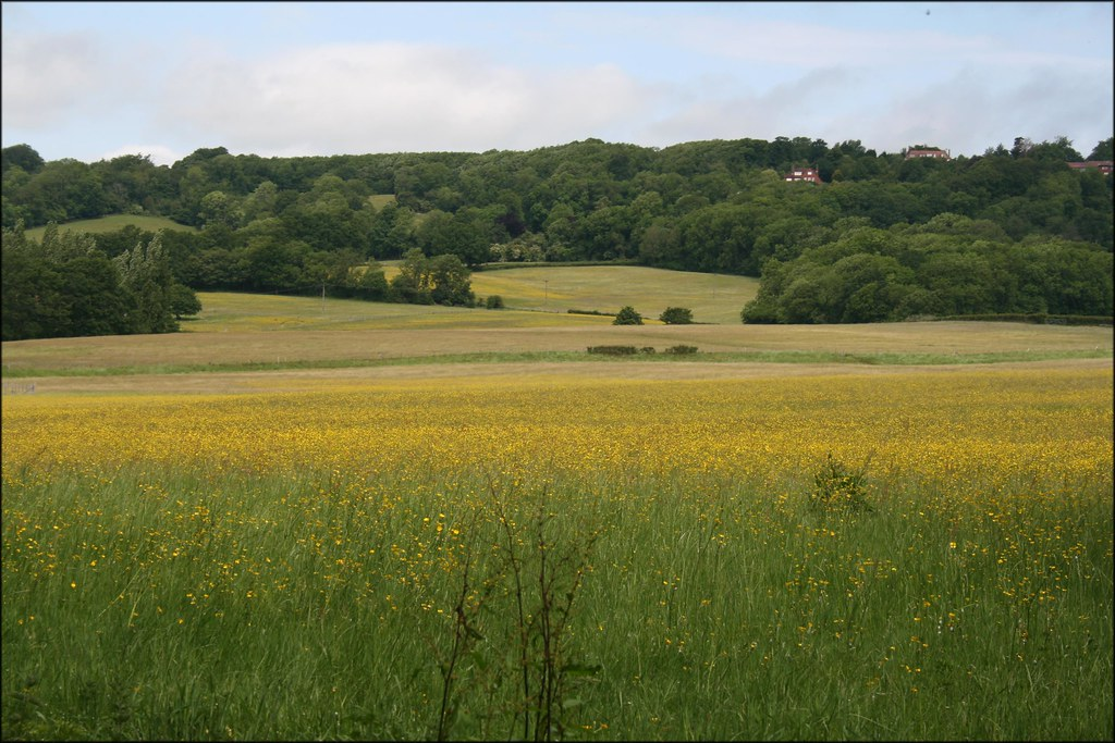 Near Hildenborough, Kent