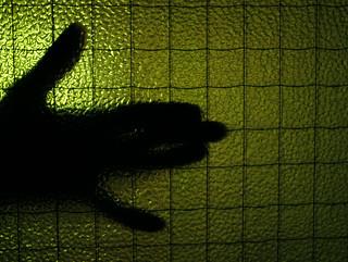 (159/365) Shadowplay