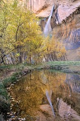 Calf Creek Falls Reflection