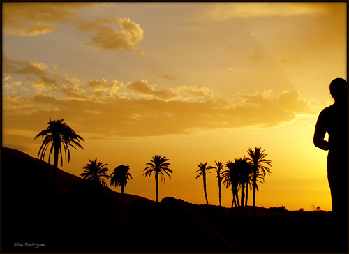 sunset boats desert barcos tunisia palmeras desierto puestadesol barcas eloy zoco tunez tozeur lagosalado thegalaxy 5photosaday flickraward platinumbestshot eloyrodriguez chottelcherid