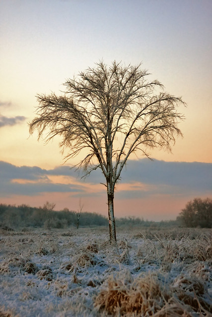 December 6th sunrise