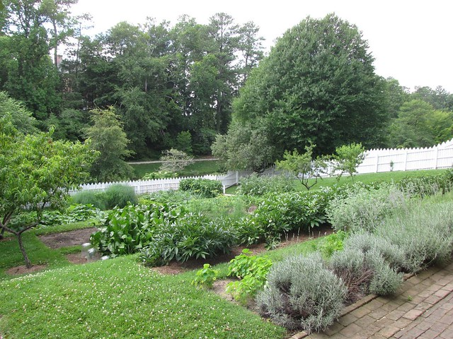 Hillside Vegetable Garden