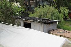 Burnt Lubisha, Tool Shed, Pavilion, and Tree
