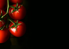Tomatoes mon amour