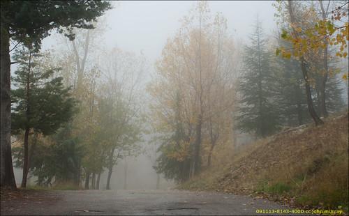 trees lebanon weekend laqlooq laklook