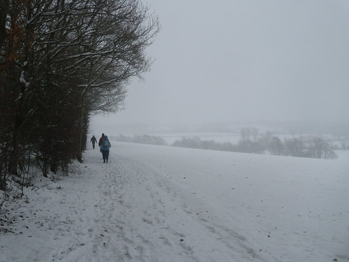 DSCN0001_02 Snowy vista