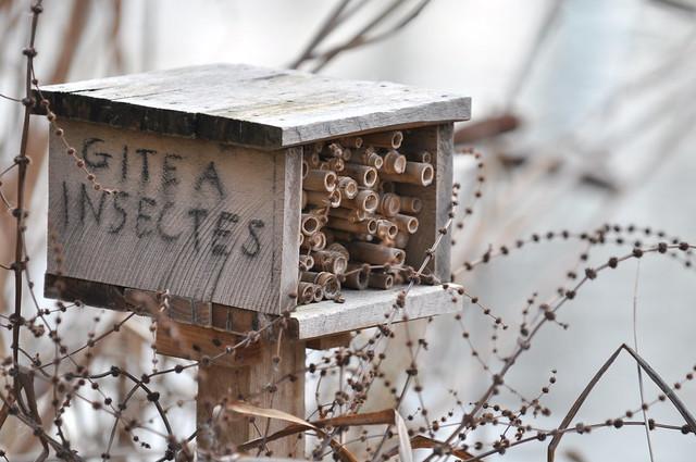 Gite à insectes (Bugs house), parc de bercy, Paris