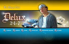 Delux Website (Advertisement)