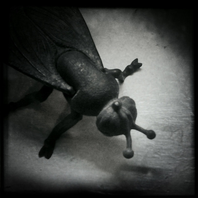 The Fly, Pose 2 (Hipstamatic iPhone Capture)