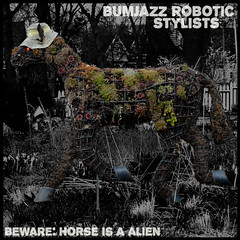 bumjazz robotic stylists