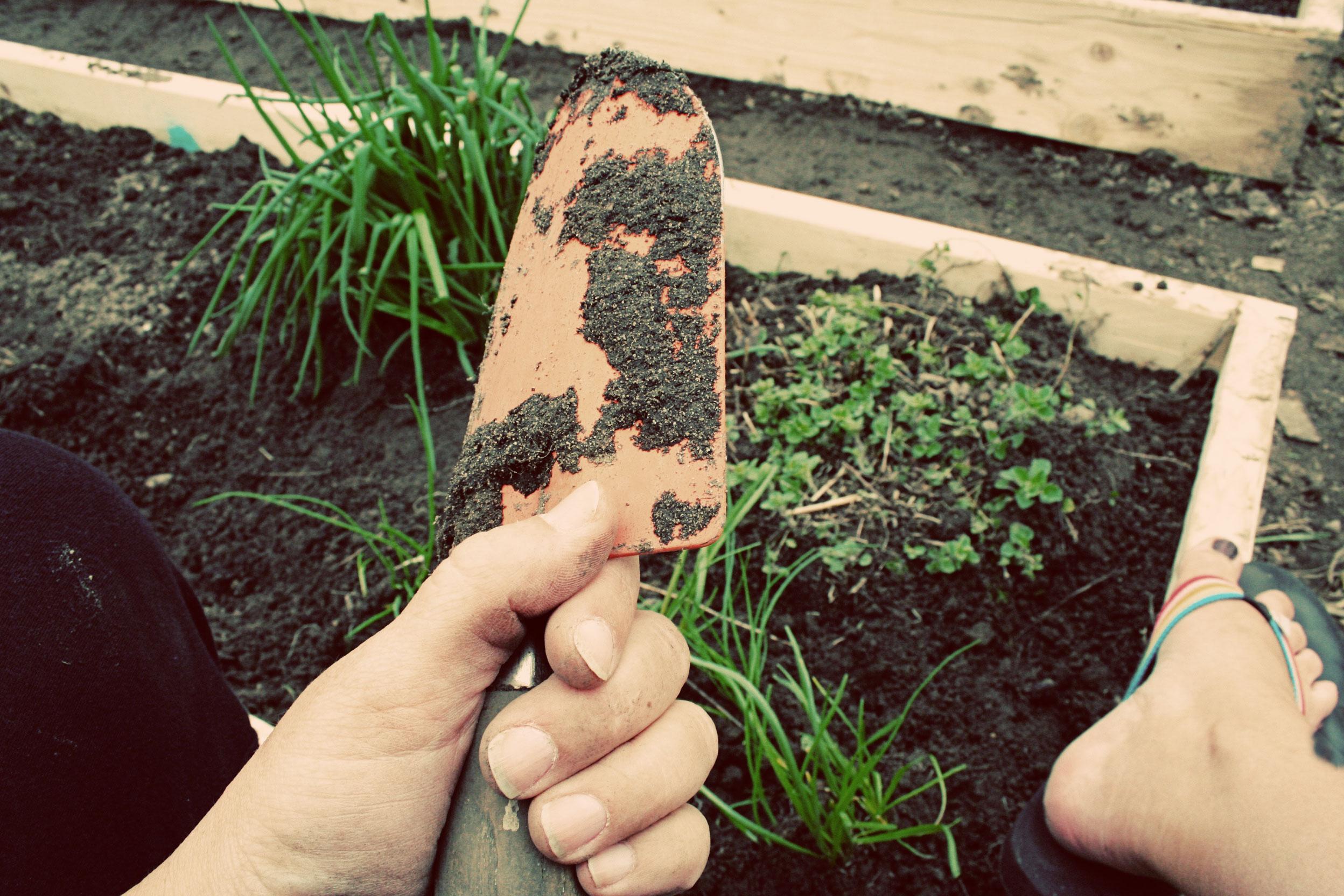 yeah! gardening time again!