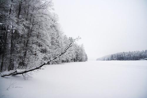 trees winter lake snow tree ice nature forest finland landscape geotagged naturephotography saari mäntsälä haukankierros hunttijärvi