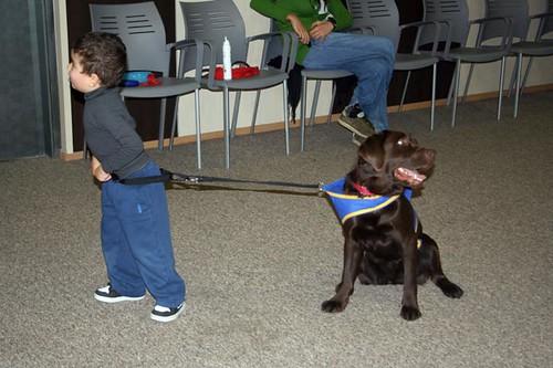 Entrega perros de asistencia para ni os con autismo - Puertas para ninos ...