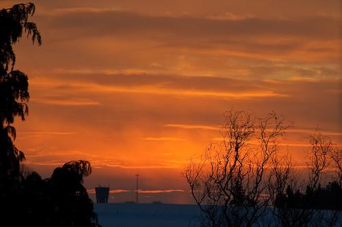 winter sun snow sunrise belgium sneeuw earlymorning onderweg project365