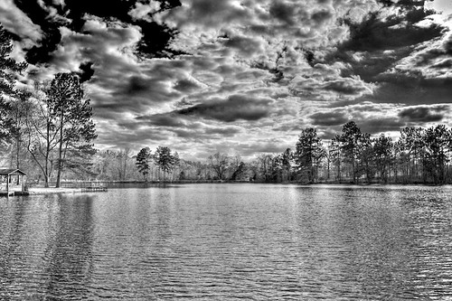 trees bw lake water nikon hdr quitman project365 tonemapped d700 2470mmf28g 3652010