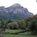 Kirstenbosch Gardens late afternoon