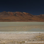 Striped Desert - Salar Tour, Bolivia